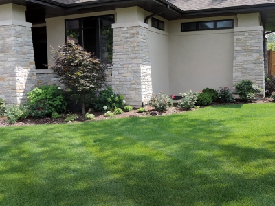 Solar-Japanese-Maple Landscaping Project