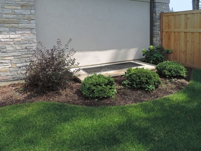 Solar-Ninebark-and-Boxwoods Landscaping Project