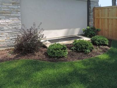 Solar-Ninebark-and-Boxwoods Landscaping Project