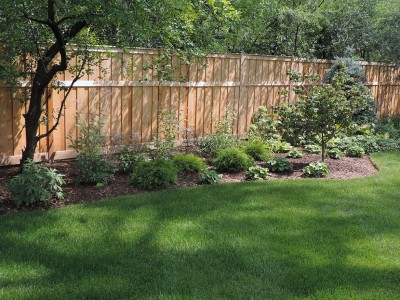 Solar Shade Tolerant Shrubs Landscaping Project