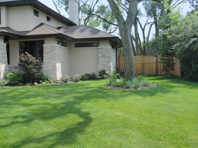 Solar-Side-Yard Landscaping Project