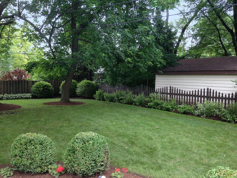 Spireas, Ornamental Grasses and Coral Bells Arlington Heights Backyard  Landscaping Backyard Landscaping in Arlington Heights - Backyard Landscaping In Arlington Heights Landscaping And