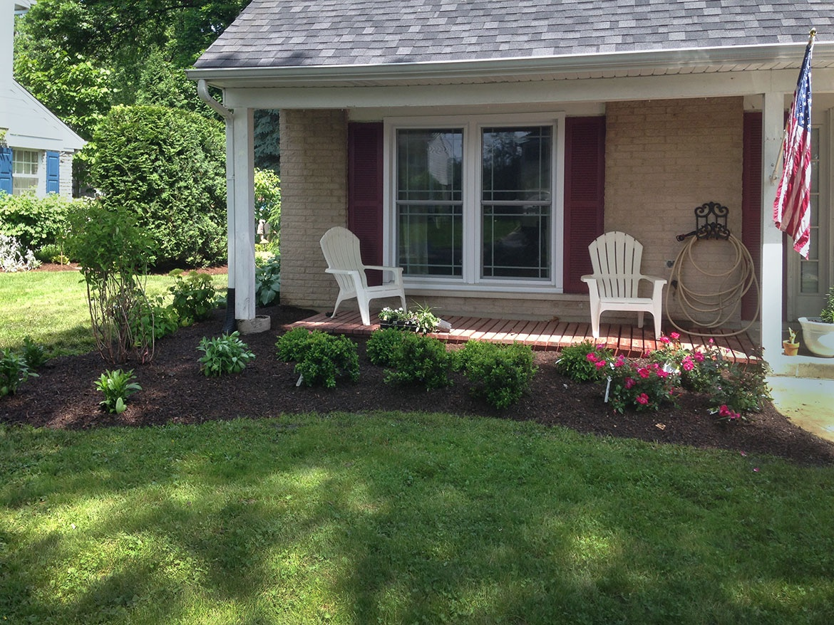 Boxwoods, Azaleas, Rose Bushes next to a Multi Stem Lilac Tree, Front  Entrance Landscape Remodel in Arlington Heights Front Landscape Remodel in  Arlington ... - Front Landscape Remodel In Arlington Heights Landscaping And