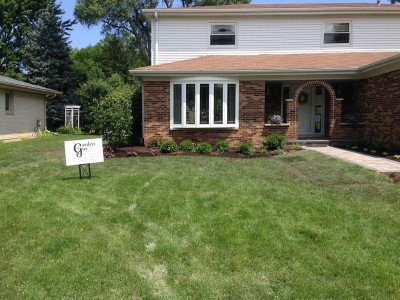Dogwood Tree, Boxwoods and Assorted Perennials   Front Entrance Remodel in Arlington Heights