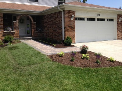 Rose Bushes, Salvia and Hostas in Front Island   Front Entrance Remodel in Arlington Heights