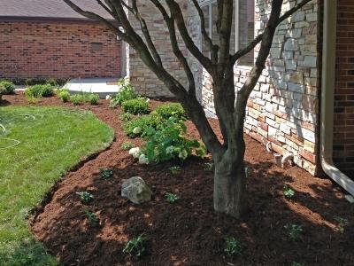 Front Entrance Planting-Bed, Elk-Grove
