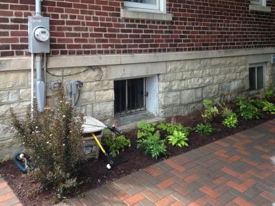 Backyard-Perennials, Arlington-Heights