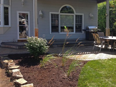 Burning Bush, Ornamental Grasses, Re grading and New Sod   Paver Patio and Stoop in Arlington Heights Sod