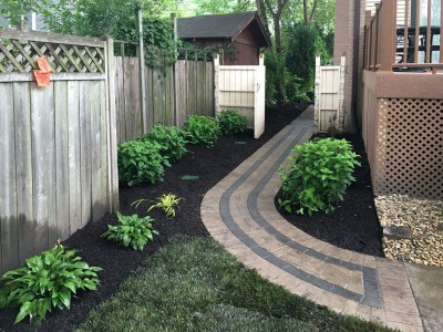 Brick paver walkway Hostas and Hydrangeas