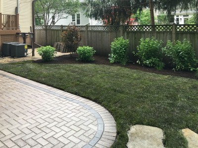 New sod and landscaping