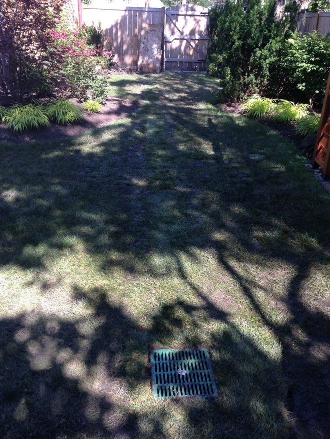rainwater drainage solutions in glenview Landscaping and