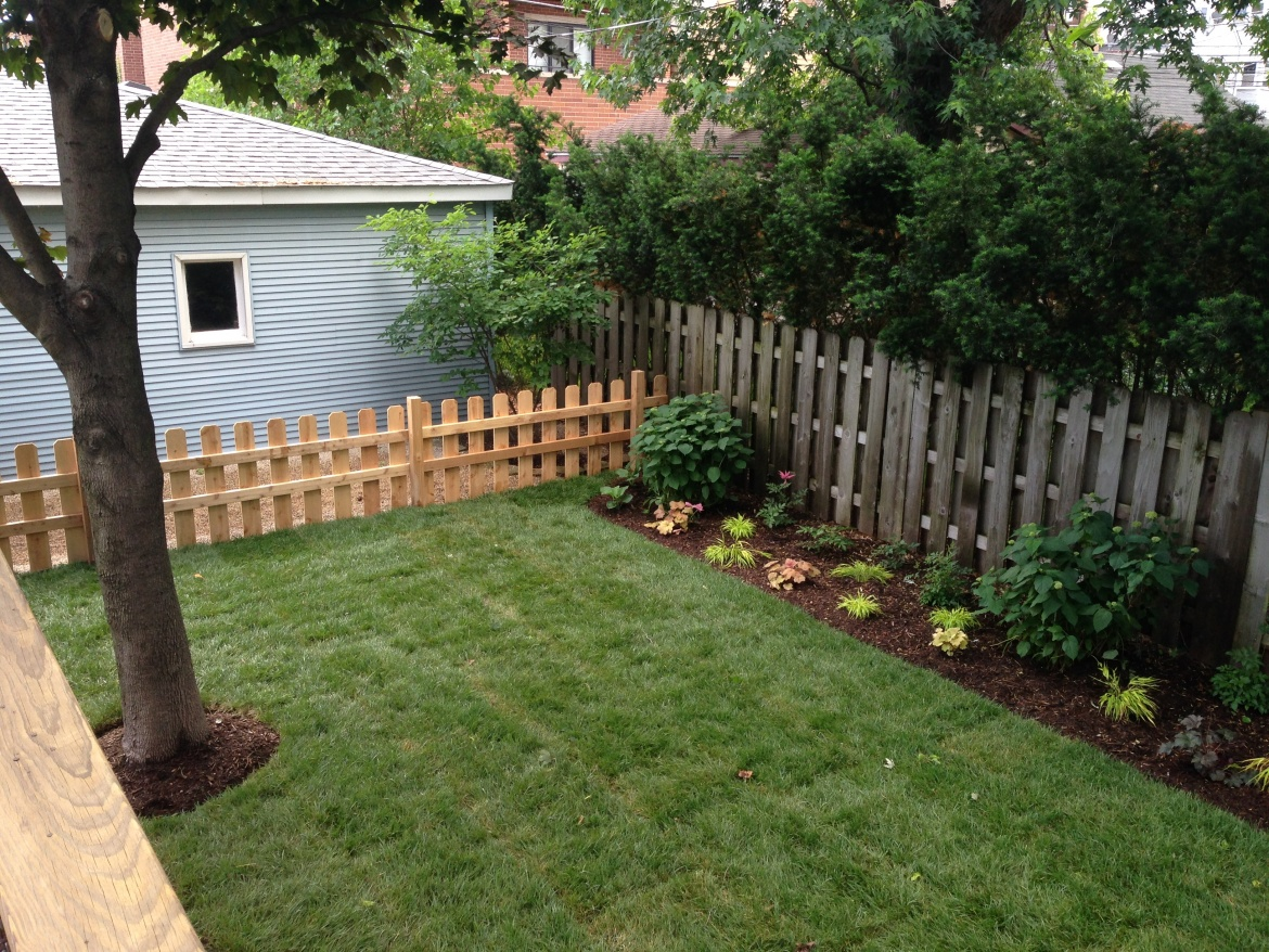 New Yard with Fence - Wrigleyville Landscaping