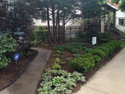 Front Entrance Yard Wrigleyville Landscaping, side view