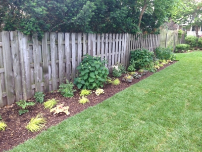 Updated Yard with Flower Bed and New Sod - Wrigleyville Landscaping