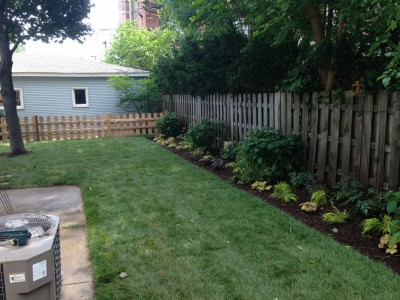 New Flower Bed   Wrigleyville Landscaping